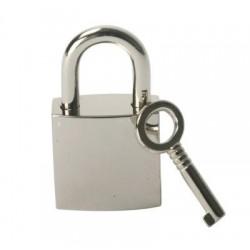 BDSM chrome bondage padlock