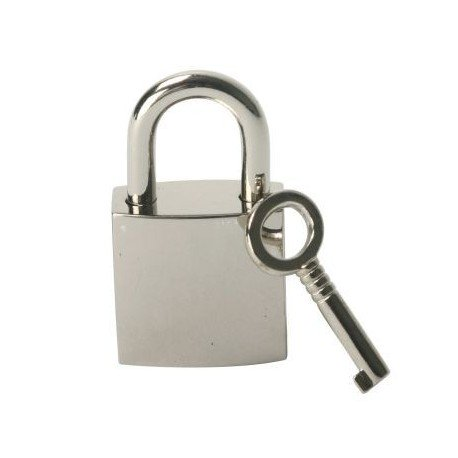 BDSM chrome bondage padlock