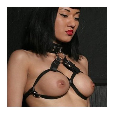 Adjustable Leather Collar and Breast Harness