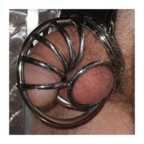 Snail Shell Chastity Cage