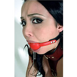 Example of Red Ball Gag